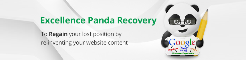 Panda-Recovery-Services-in-Chennai